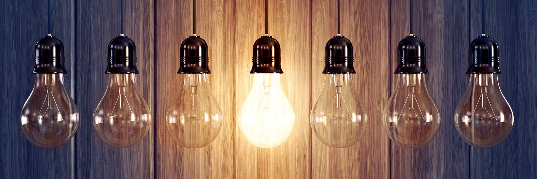 brachnen-bulbs-banner